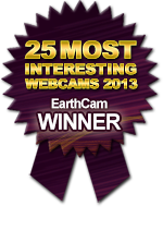 Winner EarthCam's 25 Most Interesting Webcams 2013